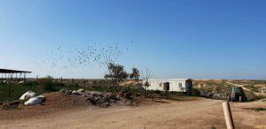 חניון קרוואנים חוות נעמ״א